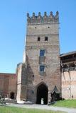 Torre en fortalezas Foto de archivo