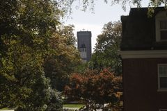 Torre entre árbol en la distancia fotos de archivo libres de regalías