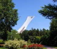 Torre entre a flor Fotos de Stock Royalty Free