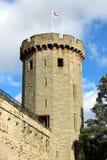Torre forte Fotos de Stock Royalty Free