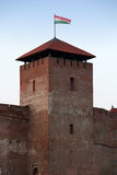 A torre gótico do castelo de Gyula Fotos de Stock