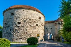 Torre gorda de Margarita Tallinn, Estonia Imagen de archivo