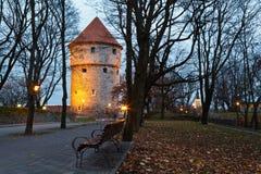 Torre iluminada na cidade velha de Tallinn Fotografia de Stock