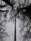 Torre Losevo de la TV imagen de archivo