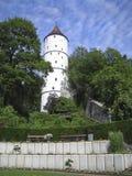Torre medieval en las maderas Imagenes de archivo