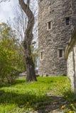 Torre medieval en primavera Imágenes de archivo libres de regalías