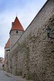 Torre medieval, pieza de la pared de la ciudad, Tallinn, Estonia imagenes de archivo