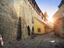 Torre medieval, pieza de la pared de la ciudad, Tallinn, Estonia fotografía de archivo