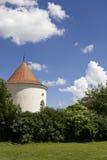 Torre medievale Fotografie Stock