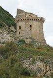 Torre medievale Immagini Stock