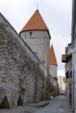 Torre medievale, parte del muro di cinta, Tallinn, Estonia fotografia stock libera da diritti