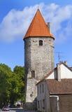 Torre medievale Tallinn, Estonia fotografia stock libera da diritti