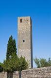 Torre medievale. Tarquinia. Il Lazio. L'Italia. Immagini Stock Libere da Diritti