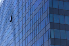 Torre moderna do escritório com janela aberta Fotos de Stock