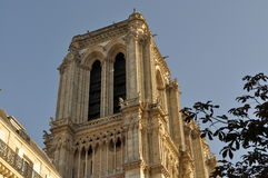 Torre nordica della cattedrale di Notre-Dame, Parigi, Francia Immagine Stock