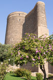 Torre nubile in vecchia città bacu l'azerbaijan Immagine Stock