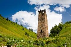 Torre svan tradizionale Immagine Stock Libera da Diritti