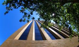 Torre a través de los árboles Fotografía de archivo libre de regalías