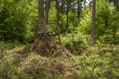Torre velha da caça na floresta Imagens de Stock