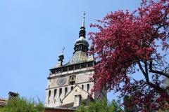 Torre vieja imagen de archivo libre de regalías