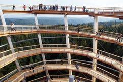 Torre Wildbad mau da vigia - Forest View preto Foto de Stock