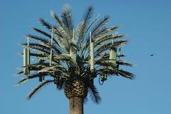 Torre y pájaro de la célula de la palmera Imágenes de archivo libres de regalías