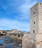 Torre y puente foto de archivo libre de regalías