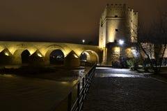 Torre y puentes larga exposición. Stock Photo