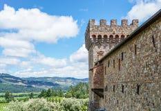 Torre y viñedo del castillo Imagen de archivo libre de regalías