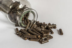 Torrefied Wood Pellets Stock Images