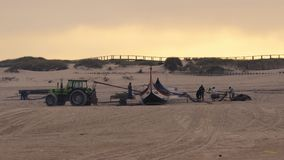 Arte Chavega. TORREIRA, PORTUGAL - NOVEMBER 17, 2016: Arte Chavega preparations arroung the ypical portuguese old fishing boats on the beach in Torreira stock video