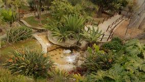 Torremolinos -Botanic gardens-Molino del Inca-Andalusia. Torremolinos-Botanic gardens-Molino del Inca-Andalusia-Spain Stock Photos