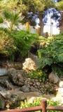 Torremolinos-Botanisk Trädgård-MOLINO DEL INCA Arkivfoton