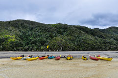 Torrent Bay in Abel Tasman National Park, New Zealand Royalty Free Stock Images