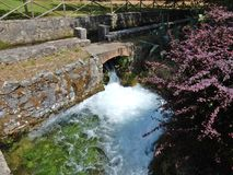 Torrent in cascade royalty free stock image