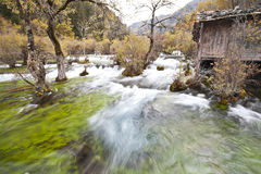 Torrent at jiuzhaigou Royalty Free Stock Image