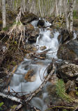 Torrent on the mountain slope Royalty Free Stock Image