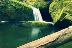 Torrent,  mountain stream with mossy stones, rocks and fallen tree. Stock Images