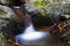 Torrente da montanha Fotografia de Stock Royalty Free