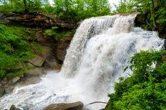 Torrente de la cascada Fotos de archivo libres de regalías