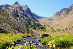 Torrente de la montaña imagen de archivo libre de regalías