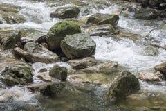 Torrente e a pedra na cama de rio Imagens de Stock Royalty Free