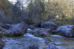 Torrente montano con chiara acqua che entra fra i massi nella foresta fotografia stock libera da diritti