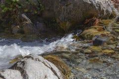 Torrente montano con chiara acqua e le foglie di autunno che scorrono lungo le banche fra i massi fotografia stock libera da diritti