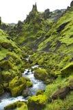 Torrente montano dell'Islanda Immagini Stock