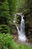 Torrente montano di Faltenbachtobel della cascata in Baviera Fotografie Stock Libere da Diritti