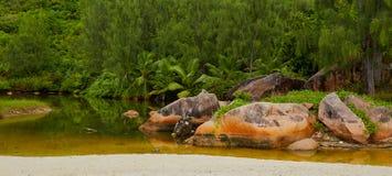 Torrente montano dopo pioggia sull'isola Fotografia Stock Libera da Diritti