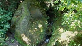 Torrente montano fra le vecchie pietre e pianta stock footage