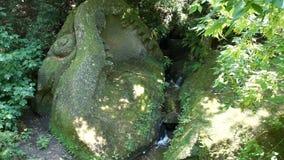 Torrente montano fra le vecchie pietre e pianta video d archivio
