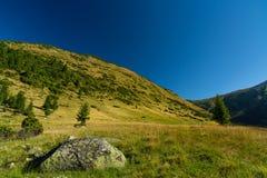 Torrente montano nelle alpi di Transylvanian Fotografie Stock